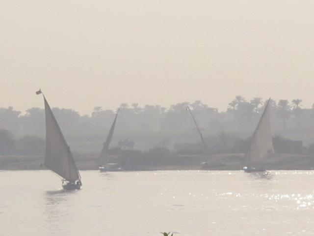 Felucca boats on the Nile