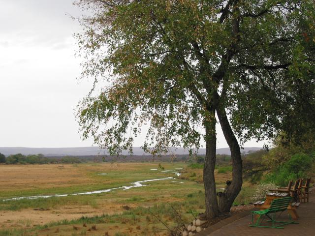 View from Letaba rest camp