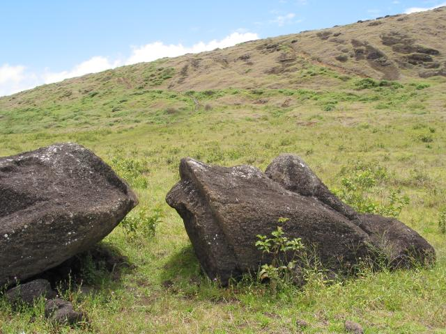 Top of toppled and broken moai