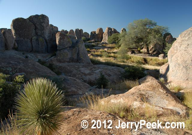 At City of Rocks State Park, New Mexico